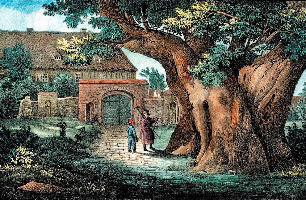 Kaditzer_Linde,_1840