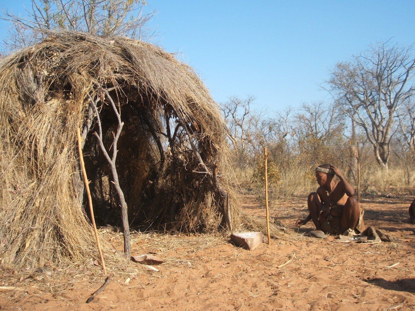 san-bushmen-shelter